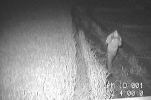 Täter fühlt sich durch seine Kapuze sicher - Bild des Täters nachts bei Infrarotlicht, wie es die Notrufleitstelle am Bildschirm sieht